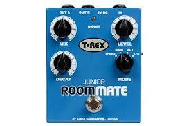 T-Rex Room-Mate Junior