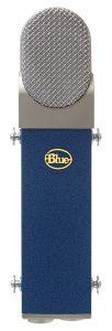 Questa immagine ha l'attributo alt vuoto; il nome del file è Blue-Blueberry-102x300-1.jpg